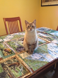 Lucy helping with layout of the Montana Quilt
